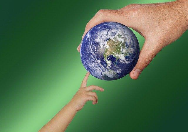 DEVELOPING GLOBAL MANAGEMENT COMPETENCIES I - BI STRAND