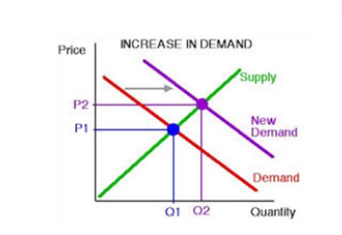PACC6007 Economics Assignment Sample 2020