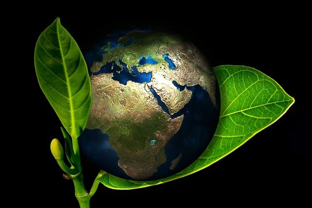 Implement and monitor environmentally