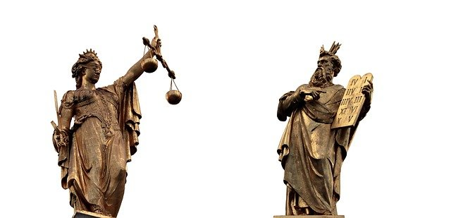 Tort Law Assignment in 2020
